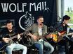 Концерт Wolf Mail в стейк-хаусе Panorama 158463