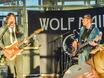 Концерт Wolf Mail в стейк-хаусе Panorama 158501