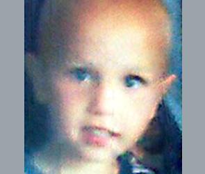 В Воронеже и Липецке волонтеры ищут трехлетнего мальчика, пропавшего 3 дня назад