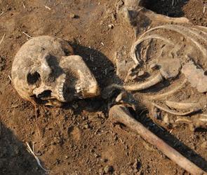 В Воронежской области откопали детское кладбище второго тысячелетия до нашей эры