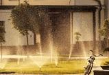 Из-за 37-градусной жары МЧС объявило «штормовое предупреждение» на 2 дня