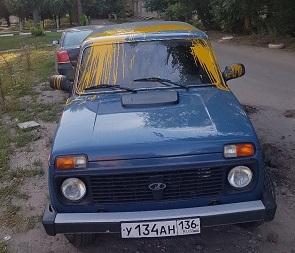 Воронежцы сообщают о появлении «ночного мстителя», обливающего машины краской