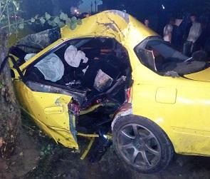 В Воронеже Toyota на большой скорости протаранила дерево: пострадали 3 человека