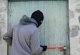 Житель Воронежа попал в ТОП-5 самых неудачливых грабителей