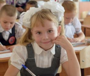 В Воронеже реорганизуют две школы