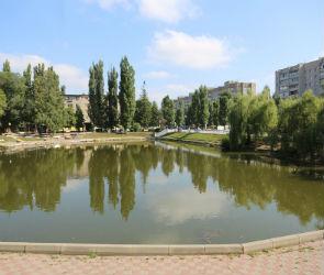 Сквер «У озера» обещают привести в порядок к 1 сентября