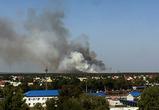 В Воронеже 76 спасателей тушат лесной пожар, площадь которого выросла до 5 га