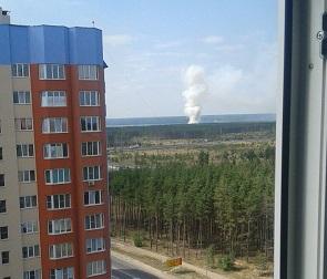 60 человек тушили очередной большой пожар в воронежском лесу