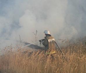 Стала известна причина крупного лесного пожара в Отрожке