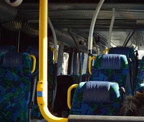После поломки автобуса под Воронежем пассажиры добирались в Москву на попутках