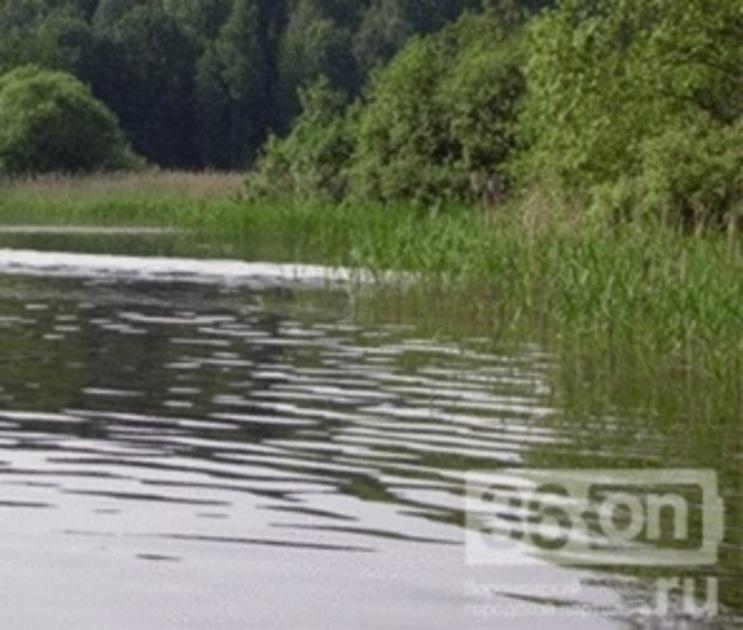 В реке под Воронежем нашли мертвого мужчину