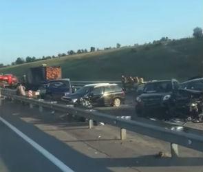 Стало известно количество пострадавших в массовом ДТП на трассе М-4 Дон