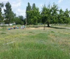 В Коминтерновском районе Воронежа появится новый парк