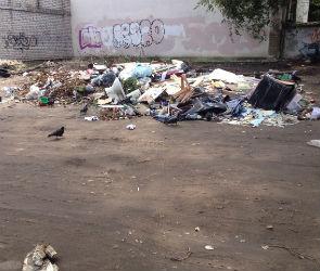 Свалка на улице Маршака возмутила воронежцев