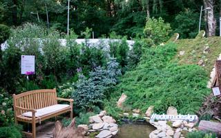 Международный фестиваль «Город-сад»-2017