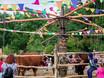 Международный фестиваль «Город-сад»-2017 159779