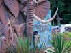 Международный фестиваль «Город-сад»-2017 159783