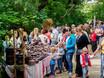Международный фестиваль «Город-сад»-2017 159786
