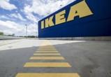 IKEA продает землю под Воронежем, где планировалось построить гипермаркет