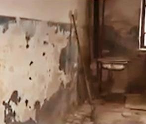 Федеральный телеканал снял сюжет про «самый жуткий дом» Воронежа