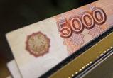 В Воронеже бомж подсунул пьяной девушке 5000 рублей «Банка приколов»