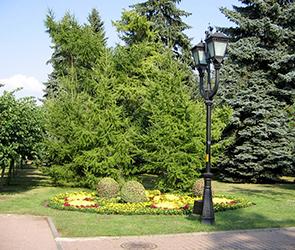В Воронеже на днях откроют первый народный парк имени поэта-декабриста Рылеева