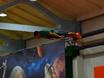 «Искусство спорта» в «Невесомости» 160296