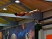 «Искусство спорта» в «Невесомости» 160297