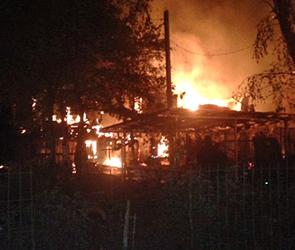 Появились фото страшного пожара, уничтожившего 20 дачных домиков под Воронежем