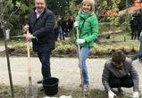 Адвокаты конторы «Бородин и Партнеры» посадили 12 деревьев в воронежском сквере