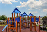 Воронежский сквер «Спортивный» ждет масштабная реконструкция