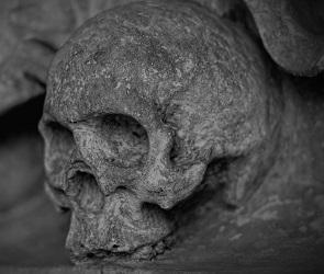 Останки пропавшего воронежца нашли спустя пять лет в подвале многоэтажки