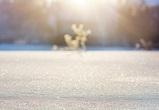 Стало известно, какая зима ждет воронежцев