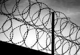 Педофила, напавшего на 9-летнюю девочку под Воронежем, осудили на 14 лет