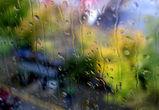 В выходные в Воронеже будет дождливо и холодно