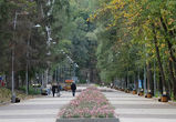 У воронежского Центрального парка появился сайт