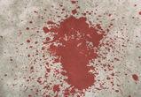 Мужчина, до смерти забивший палкой знакомого, получил 9 лет тюрьмы