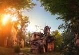 В Воронеже снесли уникальную голубятню на Пирогова