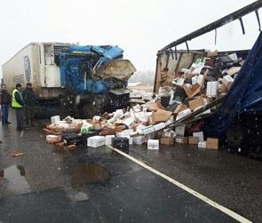 На трассе в Павловском районе столкнулись два грузовика: погиб один человек