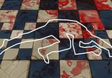 В Воронеже во время семейной ссоры девушка нанесла мужу 10 ударов ножом