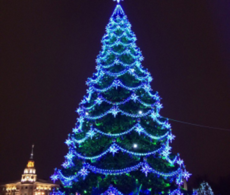 В Воронеже на площади Ленина установят «скандальную» елку за 7 млн рублей