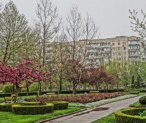 Воронежцев приглашают на открытие нового сквера в Березовой Роще