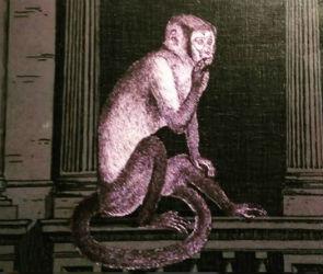 Лиловая обезьяна угощает: новый ресторан Purple Monkey в центре Воронежа