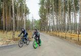Новая лыжероллерная трасса появится в Воронежской области