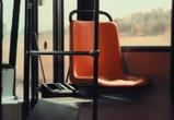 За грязные автобусы воронежских маршрутчиков будут лишать права перевозки