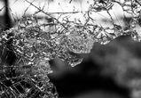 Китайская иномарка перевернулась в Воронежской области: водитель погиб