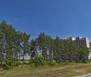 В Воронеже рядом с яблоневым садом построят многоэтажки