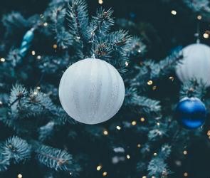 На Новый год в Воронеже дешевле приготовить «Селедку под шубой», чем «Оливье»