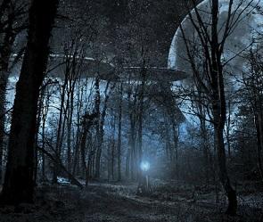 3,1% воронежцев признались, что видели НЛО