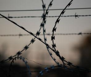 Наркоторговца, задержанного с крупной партией наркотиков, осудили на 8 лет
